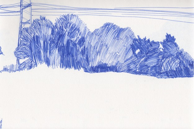 North view drawing.  Blue felt tip pen.