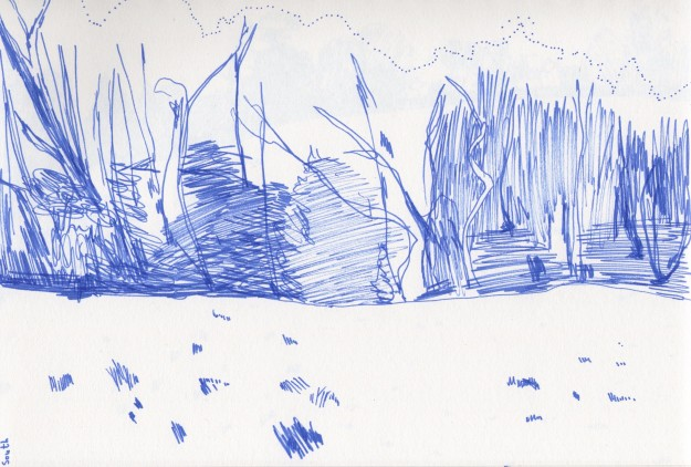 South view drawing.  Blue felt tip pen.